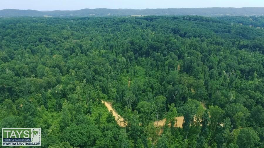 ABSOLUTE ONLINE AUCTION: 321 AC± IN TEN MILE, TN